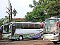 Klakson Telolet Super Top  Bus Scorpion Holiday Vs Garuda Mas