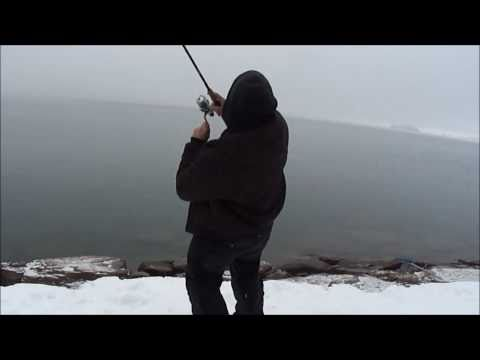 GIANT LAKE TROUT FISHING (FLATHEAD LAKE MONTANA)
