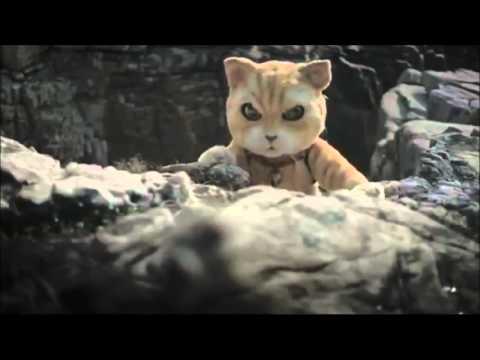 Китайский кот в поисках лекарства (реклама).flv
