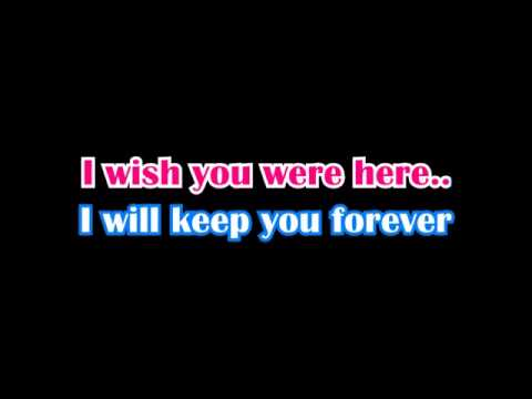 Sound of a mirror - I wish you were here