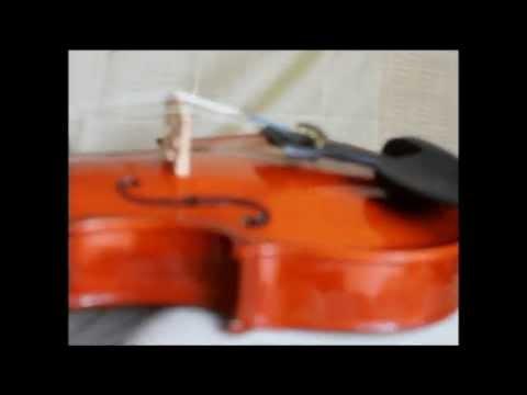 Biolapedia (Violin Encyclopedia) - 2012