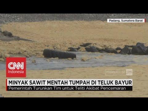 Minyak Sawit Mentah Tumpah di Teluk Bayur