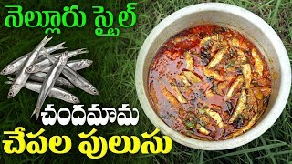Nellore Style Chandamama Chepala Pulusu | Andhra StyIe Nellore Fish Curry | ABN Indian Kitchen