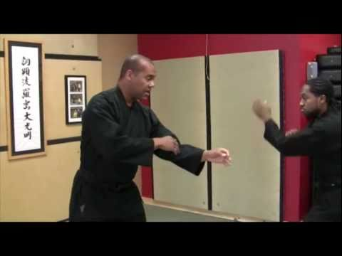 Todai Ninjutsu Training vs Combat - Blocking Image 1
