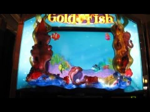 Goldfish slot machine bonus 2 bonuses youtube for Fish slot machine