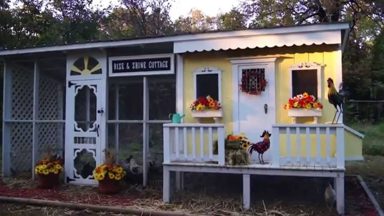Backyard Chickens In The Rise And Shine Cottage Youtube