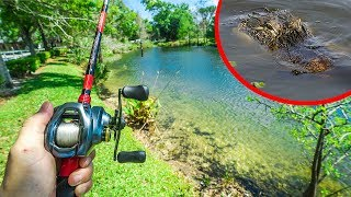 Shore Fishing ALLIGATOR INFESTED Pond!!!
