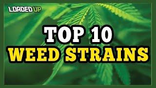 Top 10 Best Weed Strains