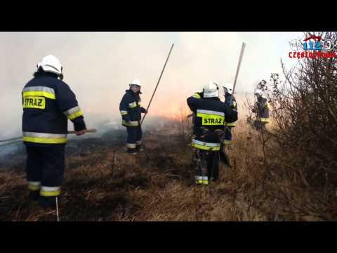 Pożar Traw W Częstochowie - Ul.Lakowa,Druciana,Leśna,Kolorowa.