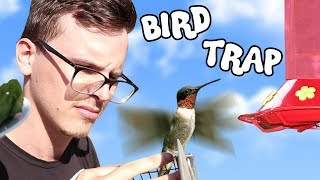 How to catch a BIRD! w/ HOWTOBASIC  - Save the Squirrels Initiative
