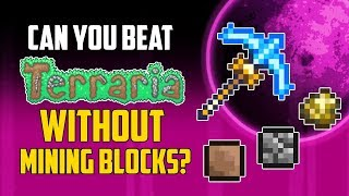 Can You Beat Terraria Without Mining Blocks? | HappyDays