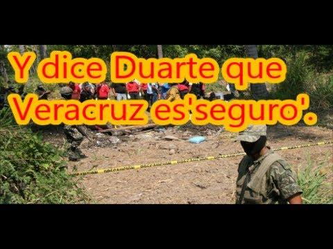 Van 27 cuerpos encontrados en narcofosa de Cosamaloapan, Veracruz.