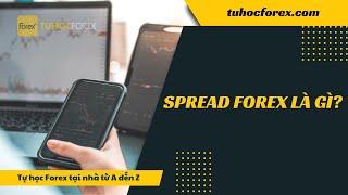 Spread là gì - Cách tính phí của sàn giao dịch forex