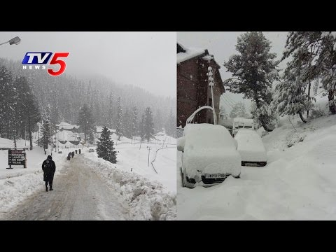 Heavy Snowfall in Kashmir | TV5 News