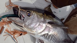 How To: Trolling for Bluefin Tuna with Spreader Bars