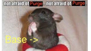 """ARCANE LEGENDS PVP:""""BREAK THE  RAT SCAMMER EGO"""" FT. BASE/PUMPMIKE"""