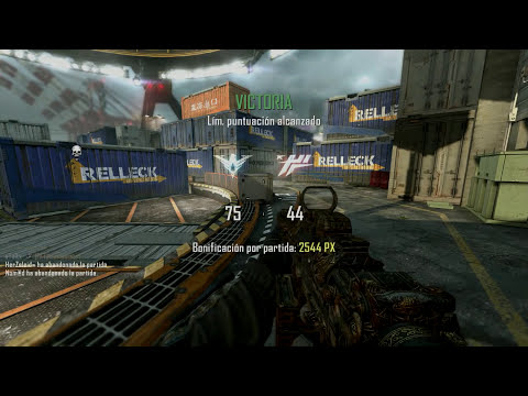 CAMUFLAJE PALADIN!!  - Black Ops 2 [PC]