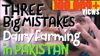 Warning: Dont make these 3 Big Mistakes in Dairy Farming - ڈیری فارمنگ  -- Ur/Hi