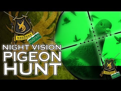 Airgun Hunting: Night Vision Pigeon Hunt with a NiteSite NS200