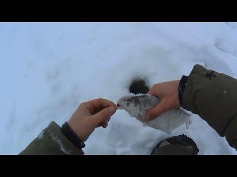 Поездка за Сопой   Ловля Белоглазки Зимой