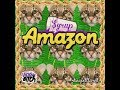 Yrup Amazon Original Mix mp3