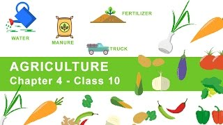 Agriculture - Chapter 4 Geography NCERT Class 10