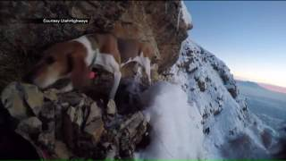 Search and rescue crew tries to save dog stuck on cliffside near Provo
