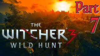 The Witcher 3 Full Gameplay in 60fps/1080p, Part 7: Banging an Herbalist (Let's Play)