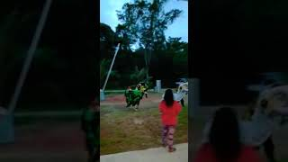 Lion's Dance Chinese New Year 2019