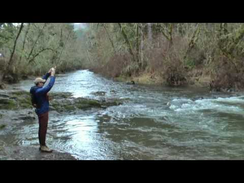 Steelhead fishing at North Fork Alsea, Oregon