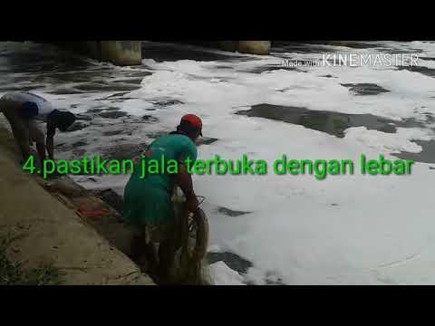 Cara menebar jala ikan