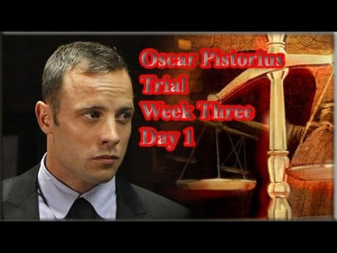 Oscar Pistorius Trial: Monday 17 March 2014, Session 2
