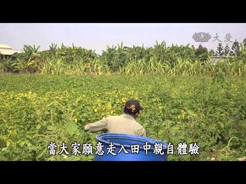 台灣-蔬果生活誌-20150125 三個女生的彩色豆漿夢