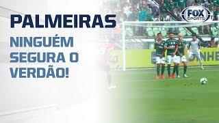 Palmeiras pode ser um espelho para o Flamengo?