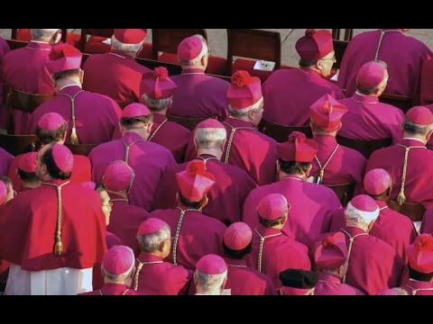 Top Advisor Warns of Cabal Undermining The Church