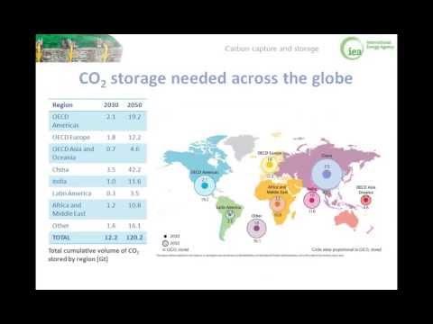 International Energy Agency CCS Roadmap Launch Webinar