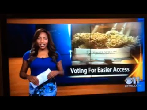 """""""F*ck It, I Quit!"""" News Anchor Quits Live on Air To Run Marijuana Business"""