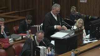 Pistorius trial: He 'fired gun through sunroof' when angry says ex