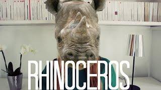 Chap VII: Rhinocéros (1959)