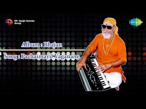 Pachamayil Vaganane song by Pithukuli Murugadas
