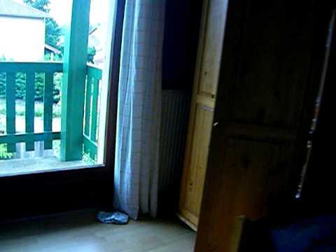 Vid o qui fait peur le chat fant me youtube for Miroir qui fait peur