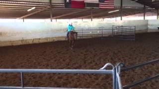 Wendy- Jared Lesh Cowhorses