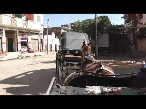 Horse carriage ride in Edfu, Egypt- Nov 2013