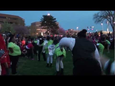Marching Cobras – Kansas City's Trayvon Martin Rally – March 26, 2012