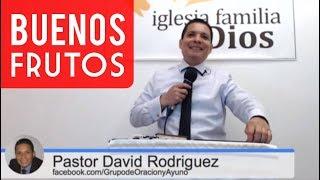 Buenos frutos y buen testimonio | Pastor David Rodriguez