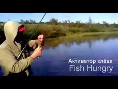 прогноз клева рыбы в константиновке донецкой