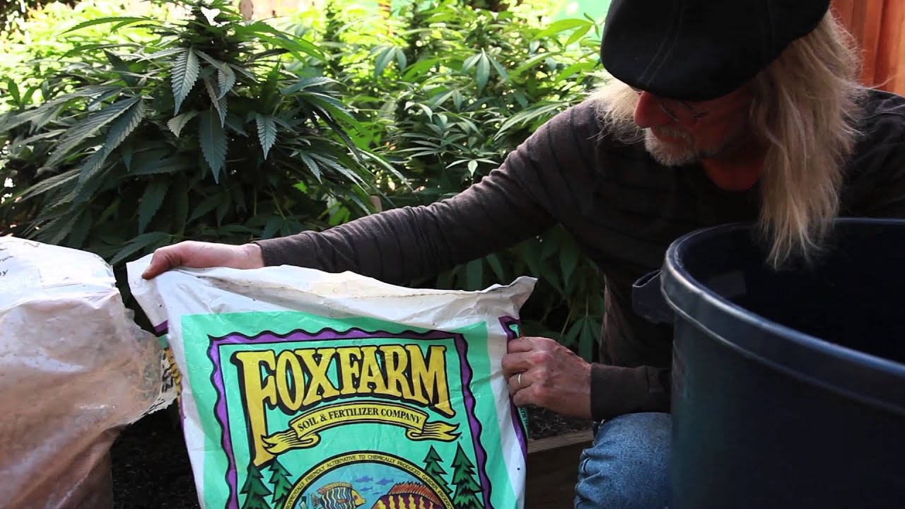 Grow cannabis mixing soil by jorge cervantes youtube for Where can i find soil