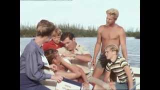 Flipper - Staffel 1, Folge 17 - Flipper als Lebensretter