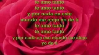 Flex-Te amo Tanto(Lyrics)