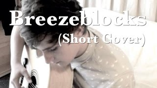 Breezeblocks | Alt-J | Short Acoustic Cover